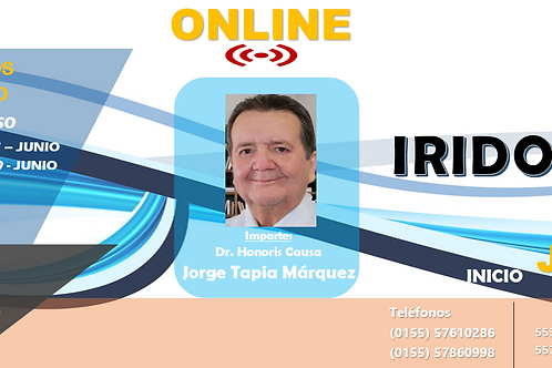 Curso Online Iridología Claudia Galindo Huicochea