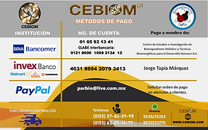 banco2020.png