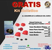 HOLISTIKO KIT ONLINE GRATIS00000.png