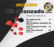 avanzado kit-1.1.png