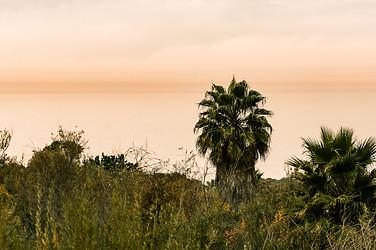 Palos Verdes, CA