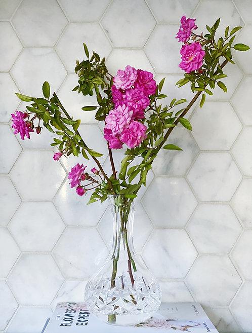 Vintage Waterford Decanter / Carafe / Vase