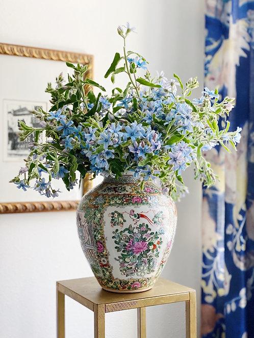 Rose Famille Vase