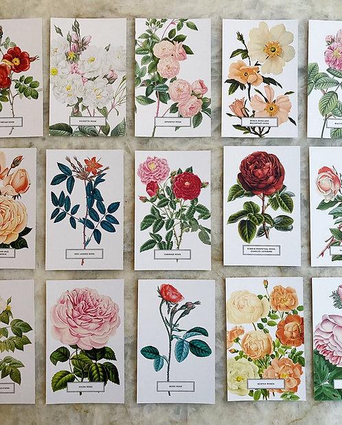 Vintage Style Postcards - Set of Six