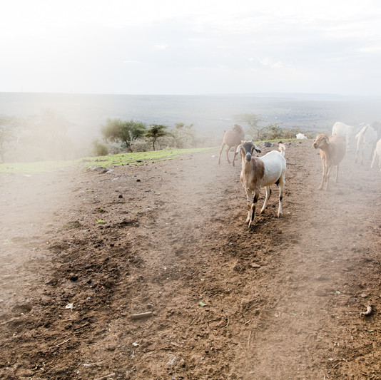 Machakos, Kenya