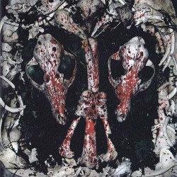 "INSTINCT ""An Auroral Gathering of Skulls"""