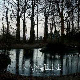 "TRANCELIKE VOID ""Where the Trees Can Make It Rain"""