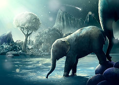 elefantefamilia.jpg
