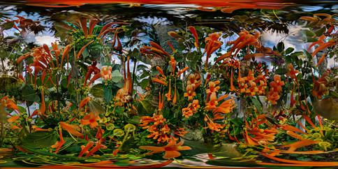 Daggerwing Nature Center, Boca Raton, Florida