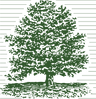 Camberly logo_green.png