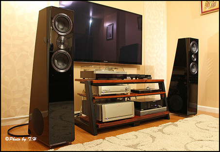 SVS Ultra Tower Speakers Review