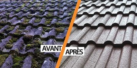traitement toiture.jpg