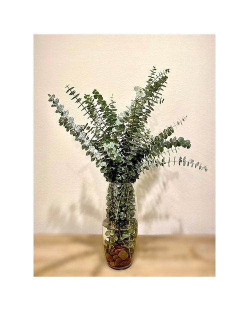Eucalyptus Vase and Shower Set