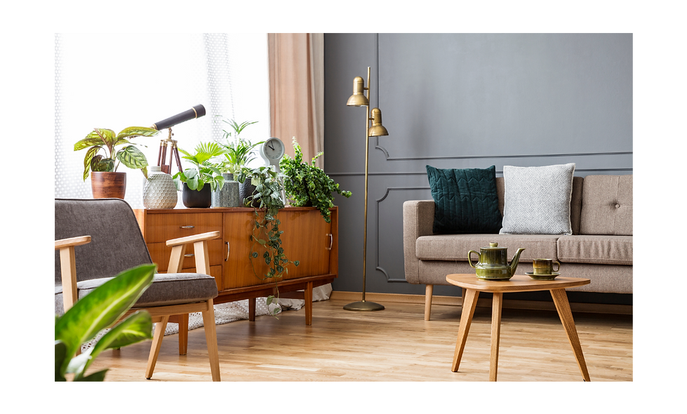 Plants Living Room 1.png