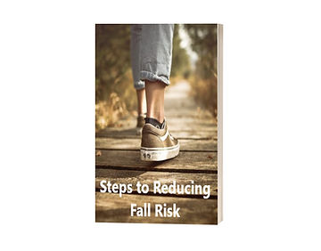 Fall Risk Book Cover 4.jpg