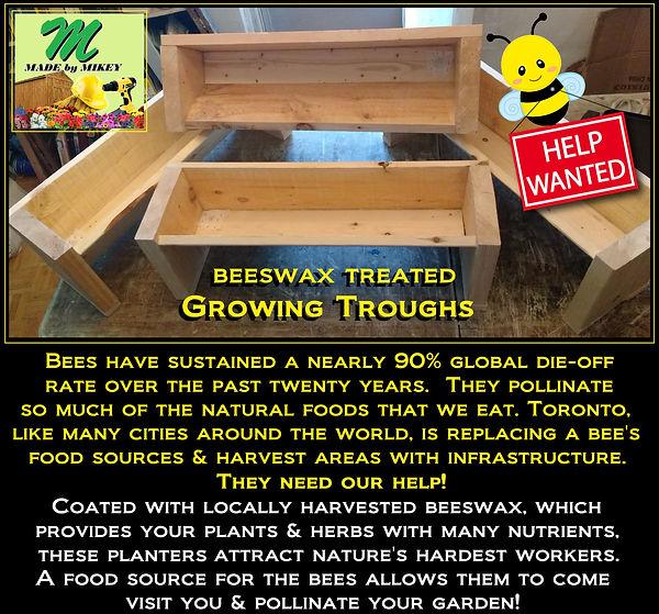Grow trough Ad - bees 3.jpg