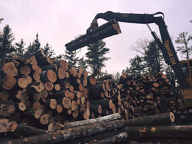 Timber Harvesting Systems