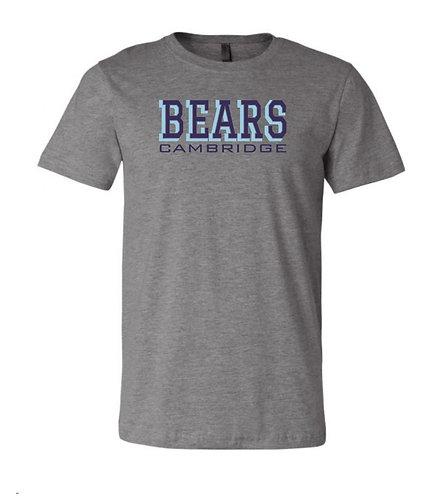 Bears Cambridge