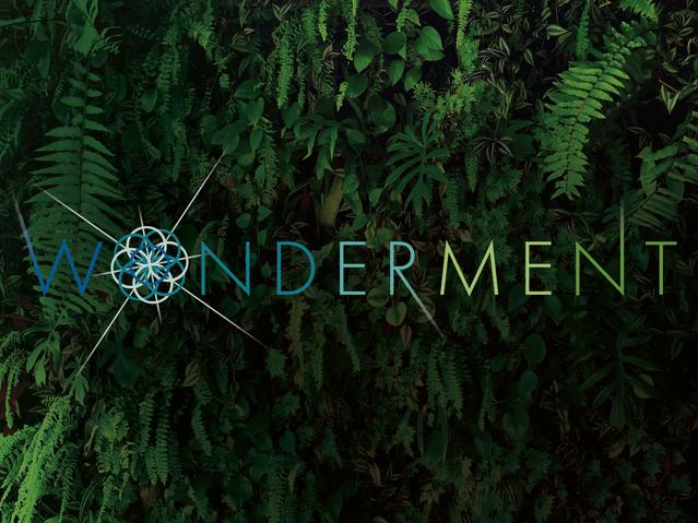 Wonderment, 2019