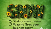 The 3 Obvious – but often Overlooked – ways to Grow your Business Today