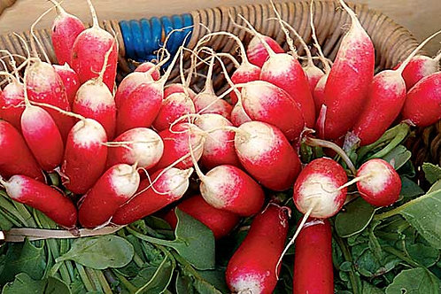RADISHES (NL) (per bunch)