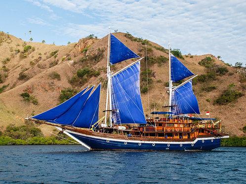 Sea Adventure Komodo Luxury