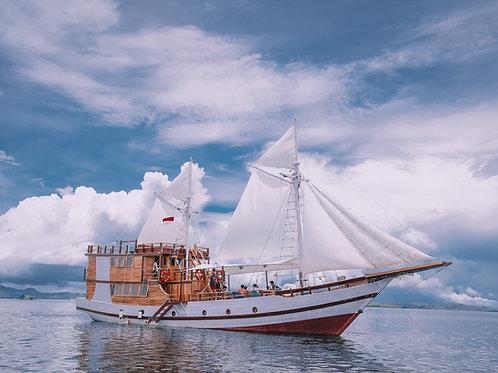 Sea Adventure Komodo Deluxe XIV