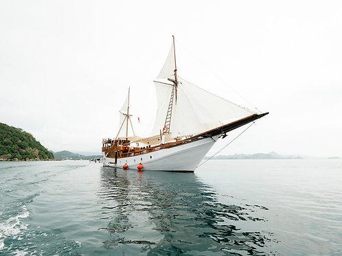Sea Adventure Komodo Deluxe XV