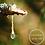 Thumbnail: Pine Tar Salve w/s