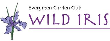 Wild Iris Newsletter logo
