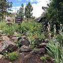 Evergreen Fire Training Center Public Garden