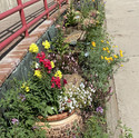 Evergreen Post Office Public Garden