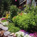 High Altitude Garden Tour