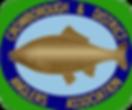 CDAA Logo-trans.png
