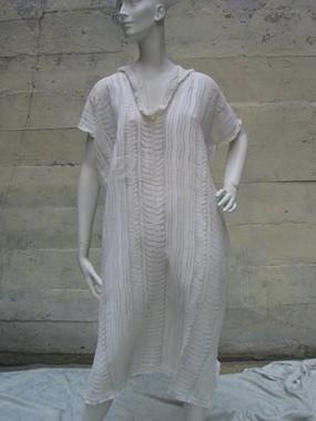 Poul Poiret dress 1908