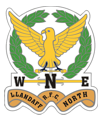 Llandaff North Logo.png