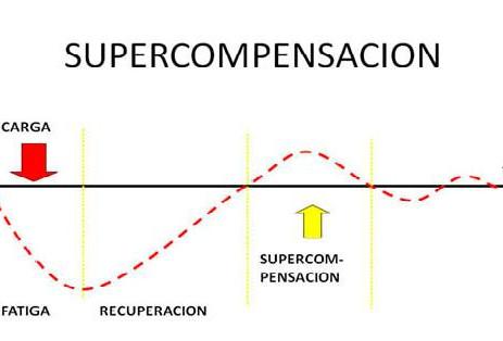 Super-compensación para volver a ser lo mismo