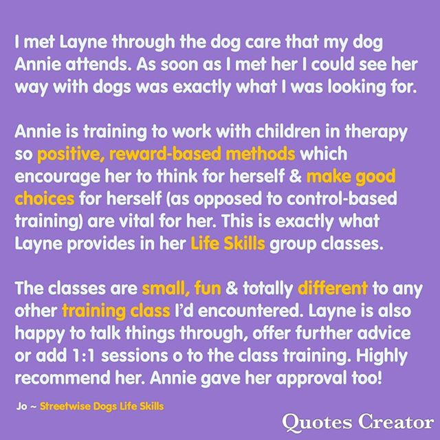 Streetwise Dogs Life Skills review from