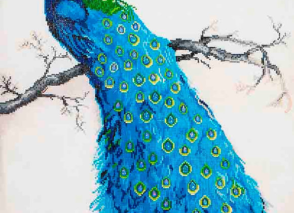 Exotic Peacock
