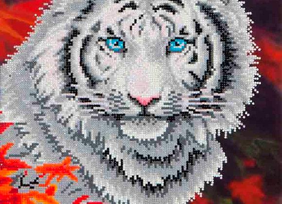 White Tiger in Autumn