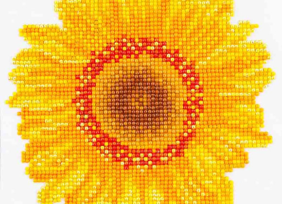 Happy Day Sunflower
