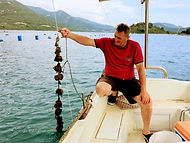 Oysters and wine tour from Dubrovnik.jpg