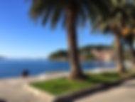 Trips around Dubrovnik.jpg
