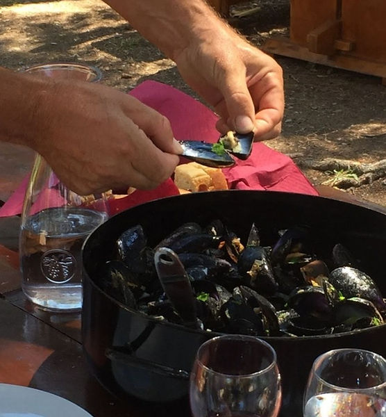 Experiences in Dubrovnik, Sea to table