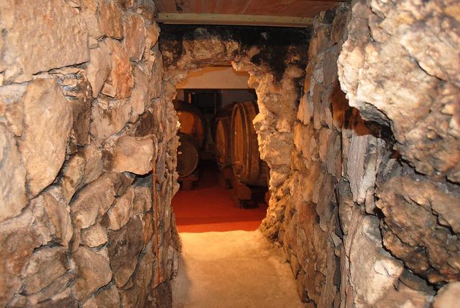 Peljesac wine tour from Dubrovnik