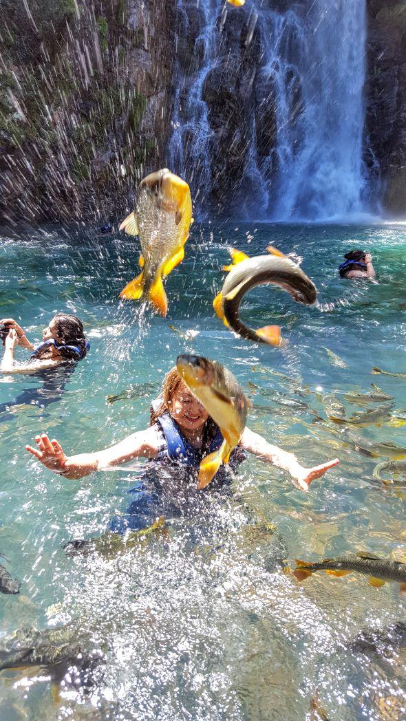cachoeira peixes