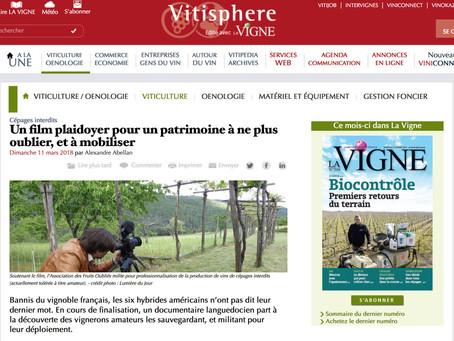 """Revue de presse """"Vitis prohibita"""""""