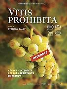 Vitis Prohibita - Affiche - FR rvb.jpg