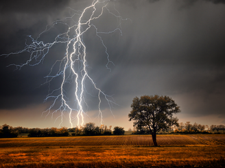 Struck by lightning has got us thinking