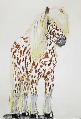 spotty horse lightened.jpg